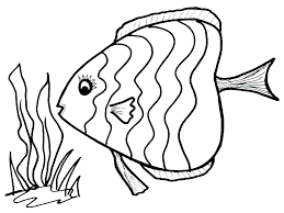 Free Tropical Fish Coloring Pages Page Color For Preschool