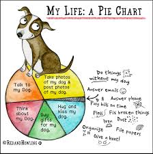 My Life A Pie Chart Red And Howling