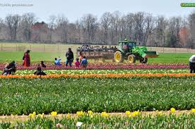 holland ridge farms 86 rues road upper freehold new jersey 08514 get outside new jersey v5 0 1