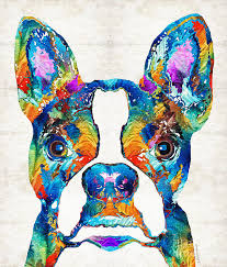 boston terrier painting colorful boston terrier dog pop art sharon mings by sharon mings