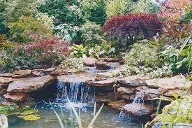 Small Picture Garden Ponds Water Features Water Features Garden Designers