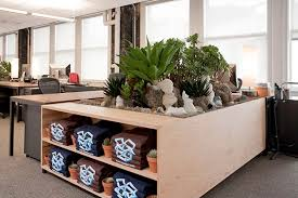 dropbox office san francisco. plants seem to crop up everywhere lending a sense of calm and serenity the dropbox office san francisco