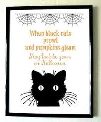 funny black cats hallowen quote