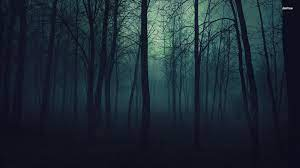 Dark Forest Wallpapers - Top Free Dark ...