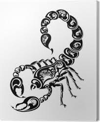 Obrazy Na Plátně Znamení Zvěrokruhu Ryby Pixers žijeme Pro Změnu