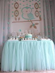 ... Welcome Home Owl Baby Shower Ideas Aqua Tutu  ...