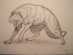 Drawn Wolf Drawn Wolf Epic 18 800 X 607 Dumielauxepices Net