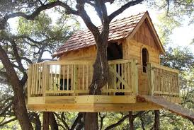 tree house ideas inside. Exellent House Inside Tree Houses Cool Design Ideas To Build Pictures For The Most Amazing  House In Cleveland Ohio On L