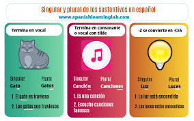 Spanish Singular Plural Chart The Basic Rules For The Plural Of Spanish Nouns