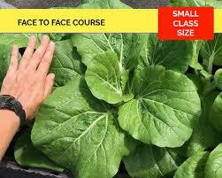 grow your own organic garden courses