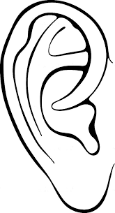 Small Picture Ears Coloring Pages Kids Coloring