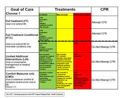Saskatchewan Health Authority Organizational Chart Advance Care Planning Goals Of Care Chart 1 2018 01 03
