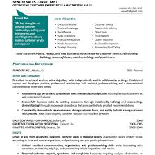 Portfolio Resume Sample For At Perfect Resume