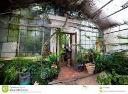 inside the old greenhouse a gl wall an open door and many p