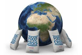english article on food crisis in words guldasta agriculture in in urdu updated 2016 problems of agriculture in updated 2016 food crises