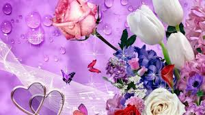 images of flowers flowers images free beautiful flowers images hd pc mobile photos whatapps