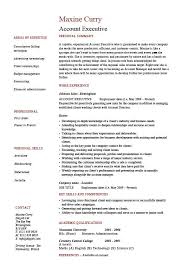 Account executive resume, sales, marketing, cover letter, job description,  references, work