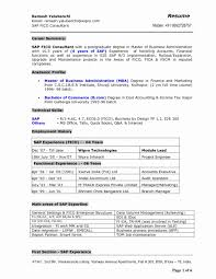 Sap Fico Freshers Resume Format Resume Template Easy Http Www