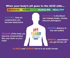 Acid Alkaline Water Chart Acid And Alkaline Body Ph Chart Designer Water South Africa