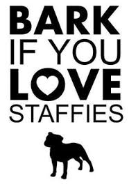 love my staffies