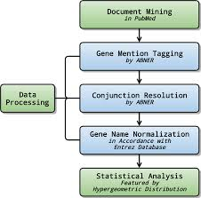Flow Chart Of Nlp Analysis For Hcc The Nlp Analysis