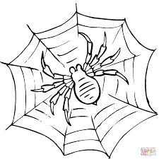 Small Picture Spider on a web coloring page Free Printable Coloring Pages