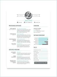 Cool Resumes Custom Professional Resume Design Cool Resumes Made By Professional Graphic