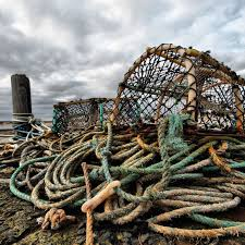 danielson 34in conical crab trap and harness fishing