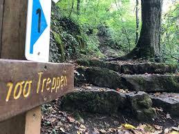 Mit einer treppe bauanleitung können sie als geschickter handwerker auch selbst eine treppe bauen. Weinberg Mitten Im Wald Aufstieg Uber 100 Treppen Runde Von Mertert Wanderung Komoot