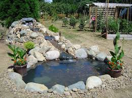 Backyard Pond Ideas Fish Waterfall Ideas
