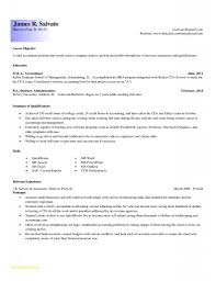 Entry Level Accountant Resume Entry Level Accountingesumeesumes Luxury New Objective For 7