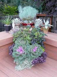 Container Vegetable Gardening  Designing Your Container Vegetable Container Garden Ideas Photos