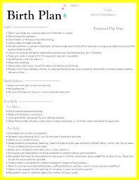 C Section Birth Plan C Section Birth Plan Template