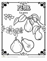 Small Picture 232 best Homeschooling images on Pinterest Homeschooling Maths
