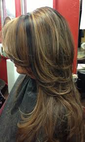 Dark Hair With Caramel Highlights Collins