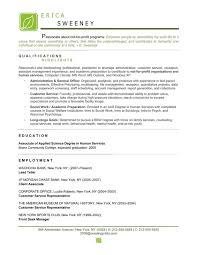 ... nonprofit professional resume Resume Writing Service to Win - resume  for non profit ...