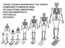 Giants Height Chart Nephilim Giants Human Giant Giant