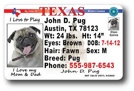 Drivers Texas License Texas Drivers