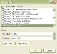 Word Thesis Template Techniques For Managing Theses Using Microsoft Word