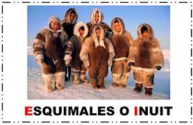 Resultado de imagen de polo norte FOTOS ANIMALES