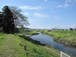 川越 氾濫