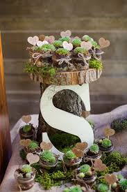 Best 25+ Succulent wedding favors ideas on Pinterest | Succulent favors,  Succulent party favors and Wedding favours succulents