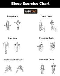 Biceps Exercise Chart Biceps Exercise Chart Www Nutrimed Co In Biceps Workout