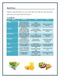 Pregnancy Diet Chart First Trimester Pregnancy Diet Ebook