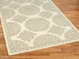 stain resistant rugs dazzling area excellent picture 9 of pet with plans best rug material