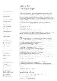Marketing Resume Samples Davidkarlsson