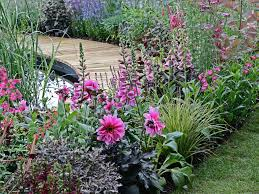 how to plant a flower garden. Foxgloves And Dahlias In A Garden Border How To Plant Flower