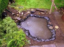 how to build a pond a step by step guide the green home