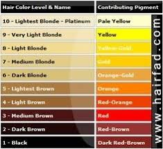 Hair Colour Level Chart Hair Color Level Chart World Of Reference