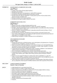 Retail Manager Resume Examples Manager Resume Samples Project Sampleles Free Retail Sales 89